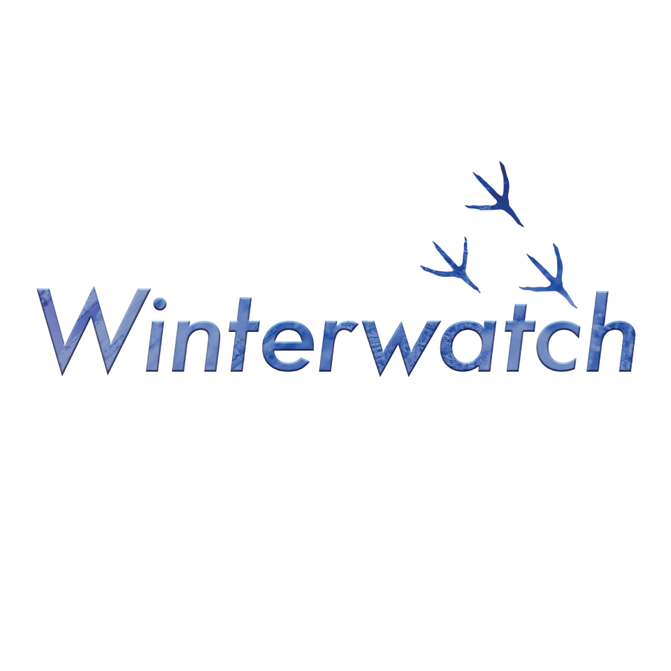 B009-2066-Winterwatch-case-study-3.jpg